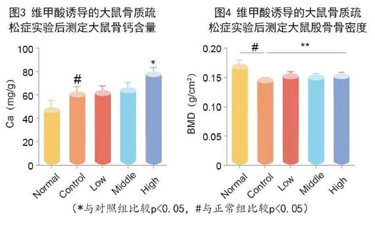 牛骨髓肽促进骨骼再生.png