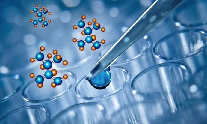 小分子肽有什么作用.png