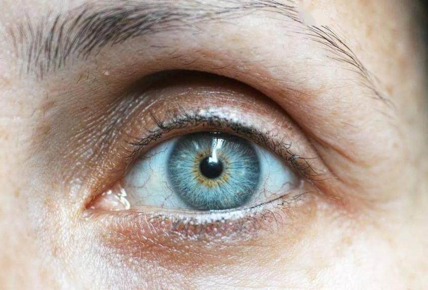 肽对眼睛的作用,小分子肽让眼睛越来越明亮